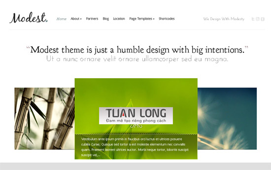 Modest v2.1 ElegantThemes WordPress Portfolio Theme