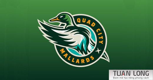 16-hockey-ducks-logo-design