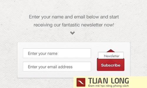 15-fifteen-newsletter-subscription