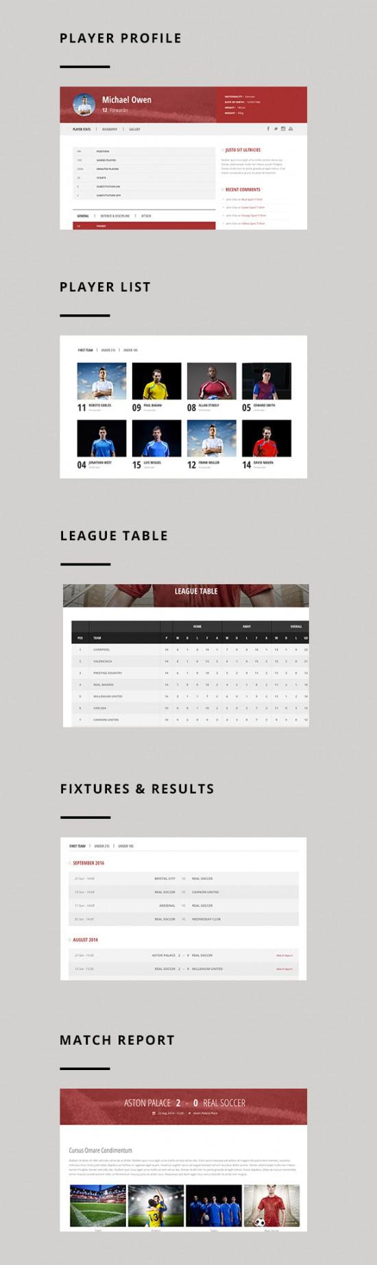 Real_soccer_theme_wp