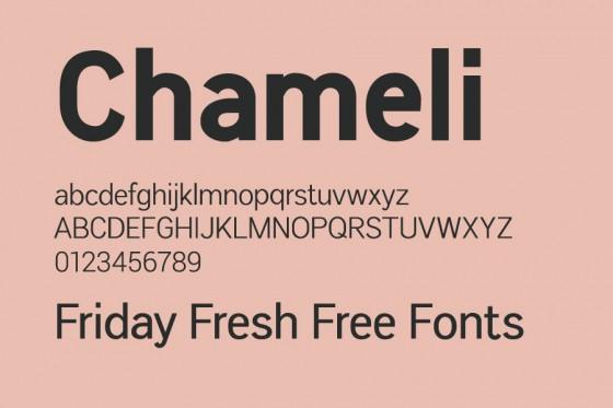 chameli_font chu_dep