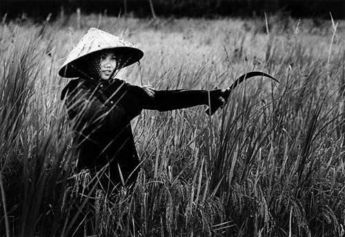 chien-tranh-viet-nam-trong-mat-nguoi-my (4)