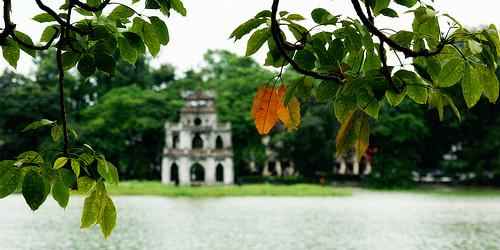 truong-trinh-dai-hoi (1)