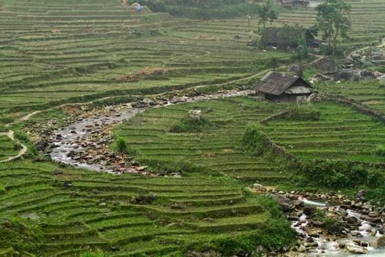 phien-cho-vung-cao-voi-nguoi-hmong-den-tu-sapa-tai-metropole (2)