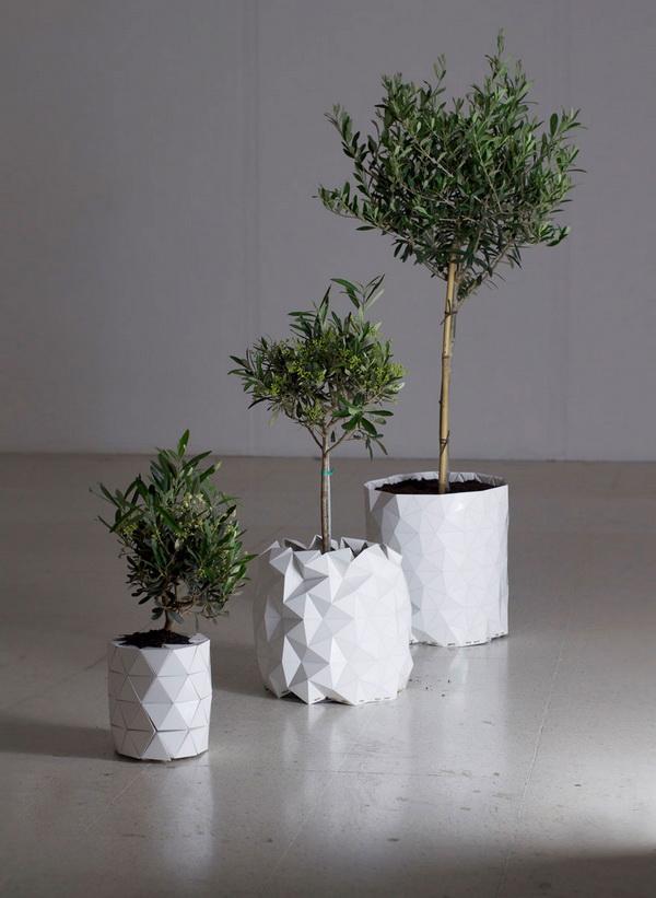 growth-chau-cay-origami-tu-lon-doc-dao (2)