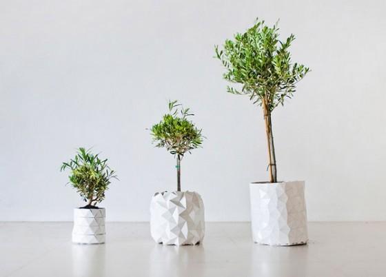 growth-chau-cay-origami-tu-lon-doc-dao (5)