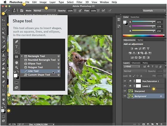 giao-dien-photoshop-cong-cu-shape-tool