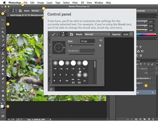 giao-dien-photoshop-control-panel