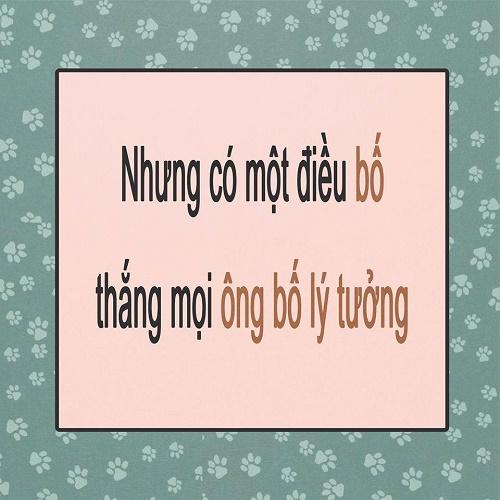 tranh-vui-diem-khac-nhau-giua-bo-ly-tuong-va-bo-binh-thuong-7