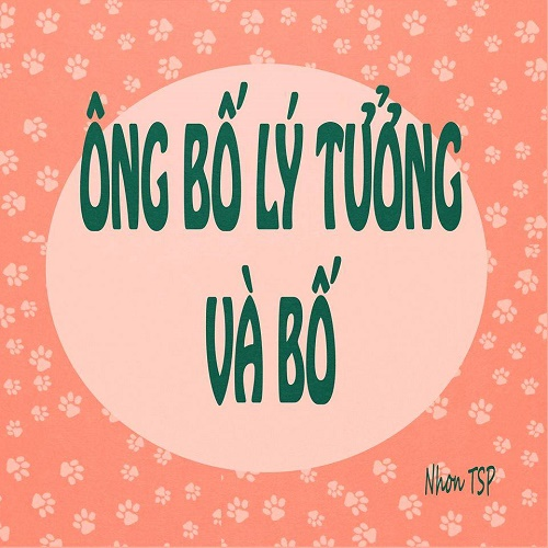 tranh-vui-diem-khac-nhau-giua-bo-ly-tuong-va-bo-binh-thuong-9