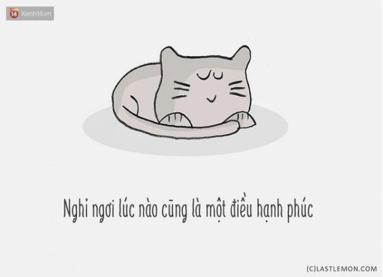 tranh-vui-nhung-chu-meo-da-day-ban-nhung-gi-15