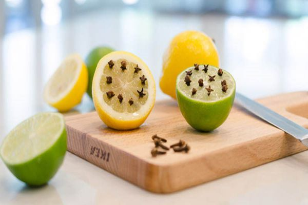 phuong-phap-diet-muoi-hieu-qua-tu-chanh-tuoi-1