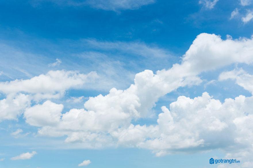 Đám mây vector 14
