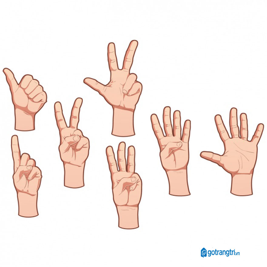 Mẫu bàn tay vector 13