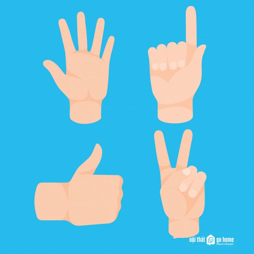 Mẫu bàn tay vector 17