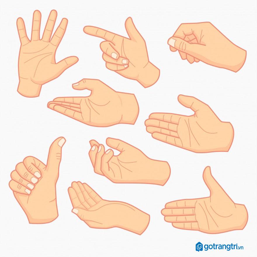 Mẫu bàn tay vector 3