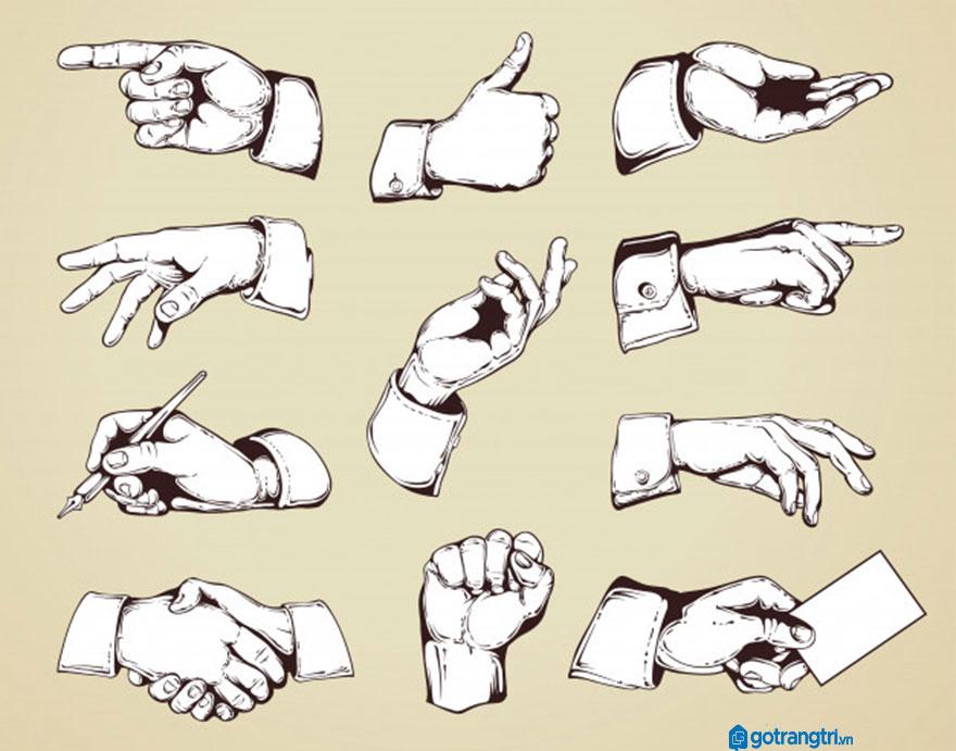 Mẫu bàn tay vector 21
