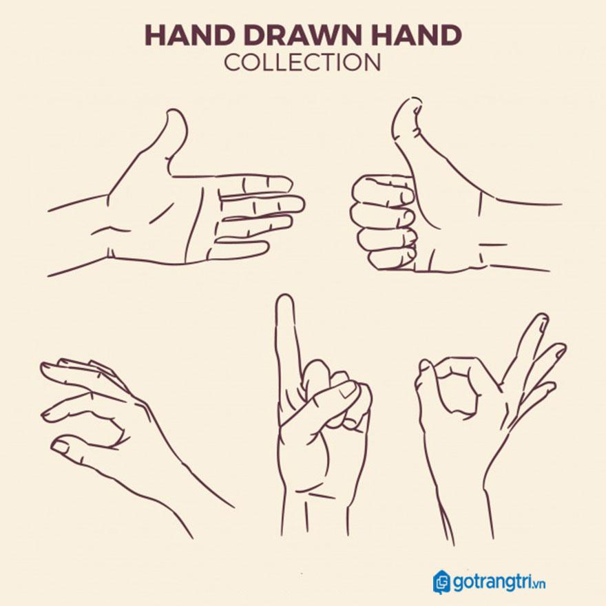 Mẫu bàn tay vector 25