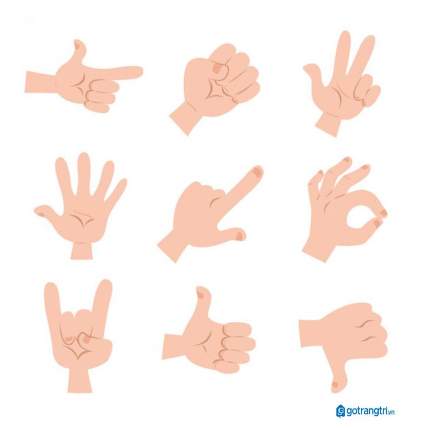 Mẫu bàn tay vector 26