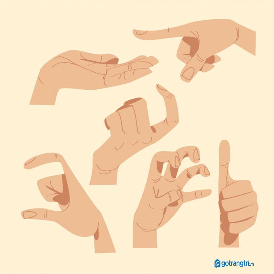 Mẫu bàn tay vector 28
