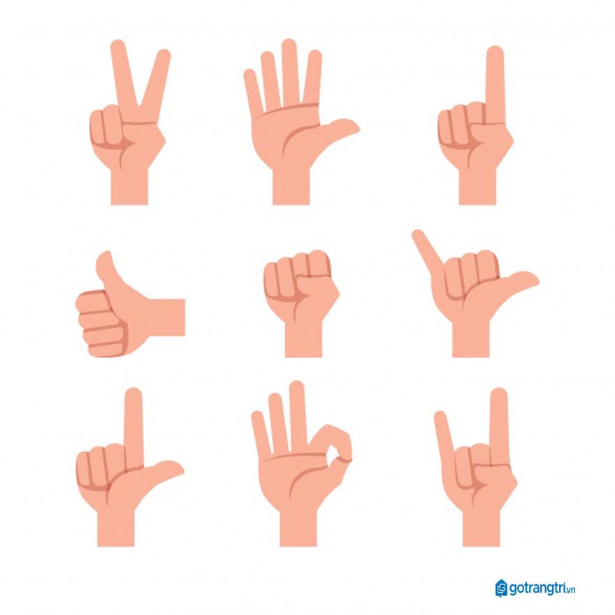 Mẫu bàn tay vector 6