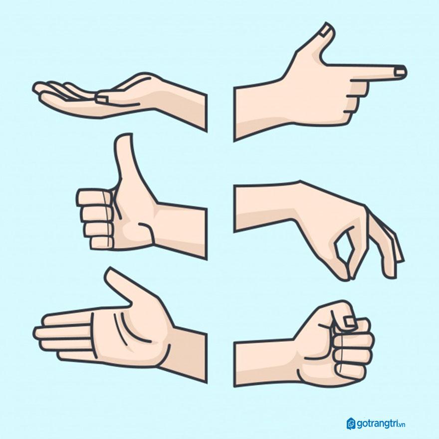 Mẫu bàn tay vector 7