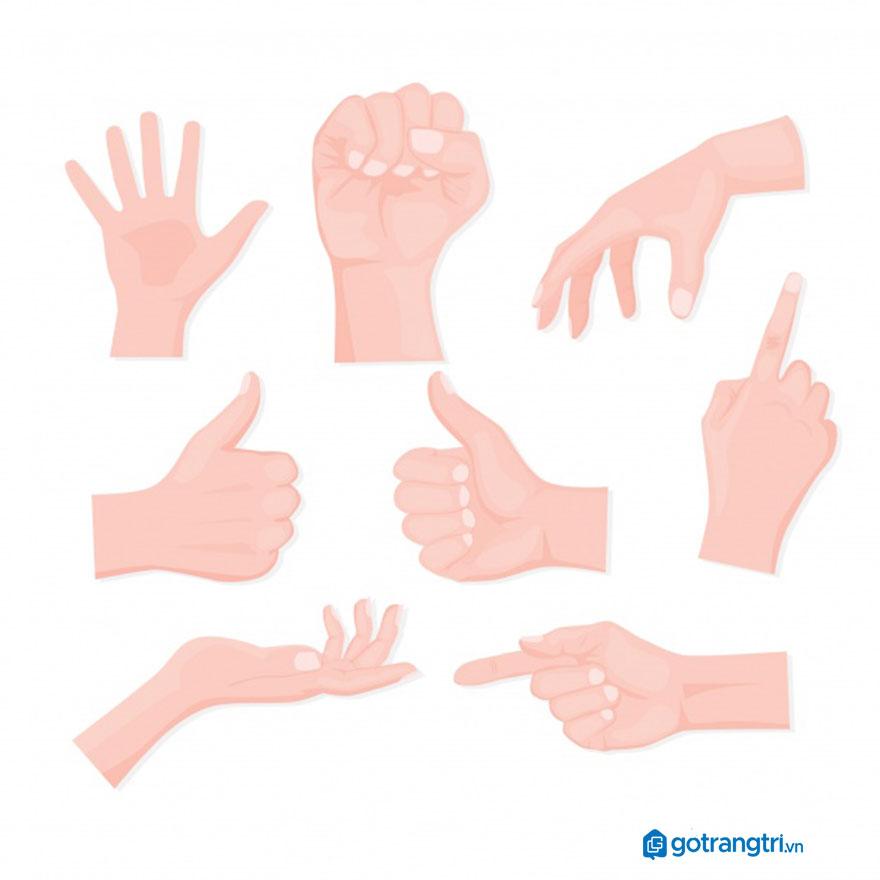 Mẫu bàn tay vector 10