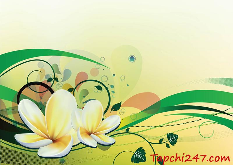 Hoa sen vector 47