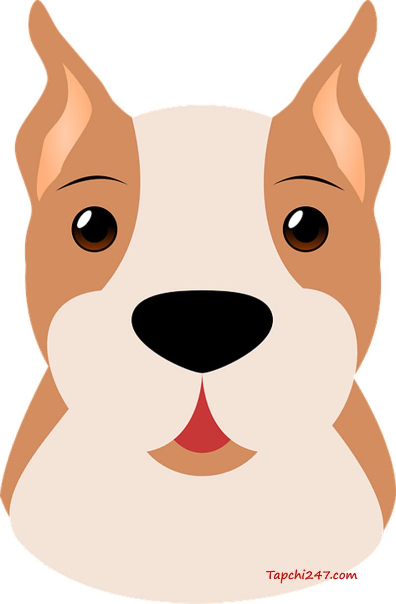 con chó vector